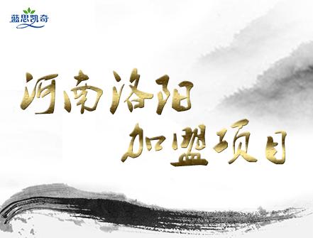 除甲醛招商加盟:河南洛阳李总加盟蓝思凯奇