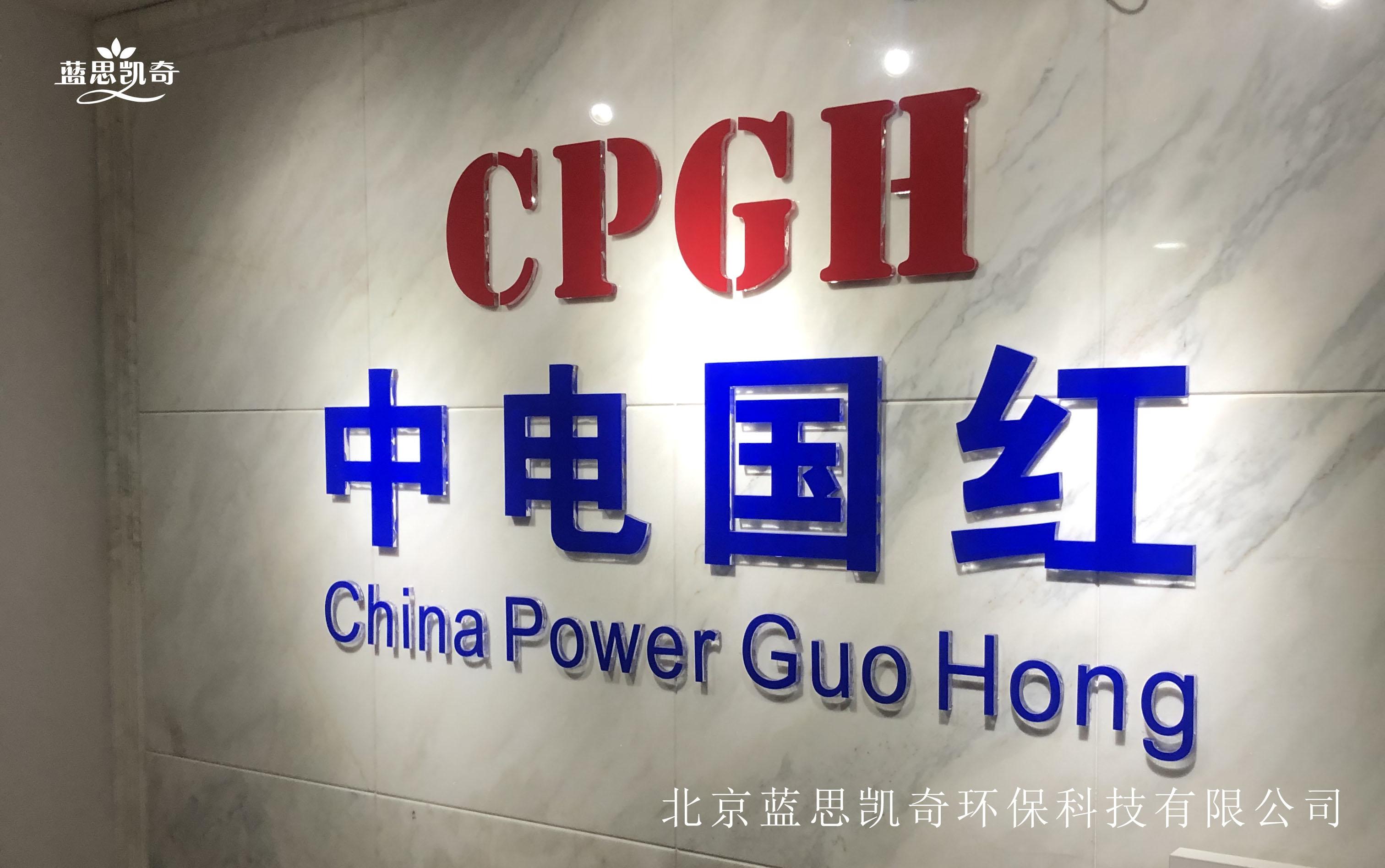 工程案例:中电国红电力
