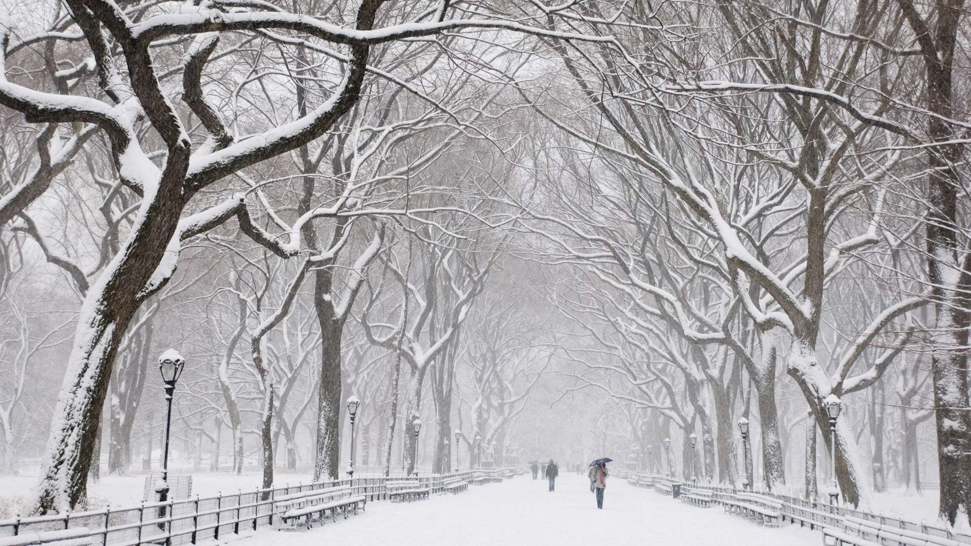立冬时节,除了迎接冬季,更要当心甲醛威胁